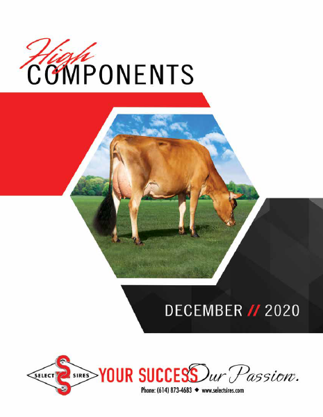 December 2020 High Components Book