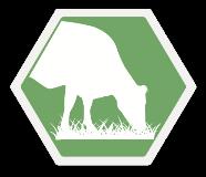 GrazingPRO Icon